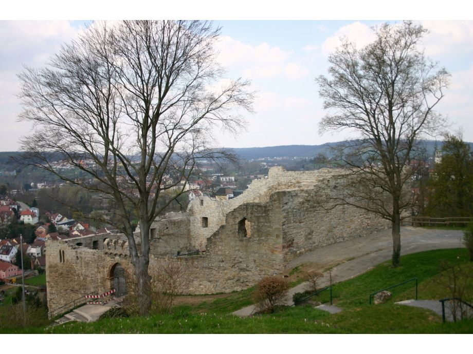 Burg, Südostansicht (April 2010)